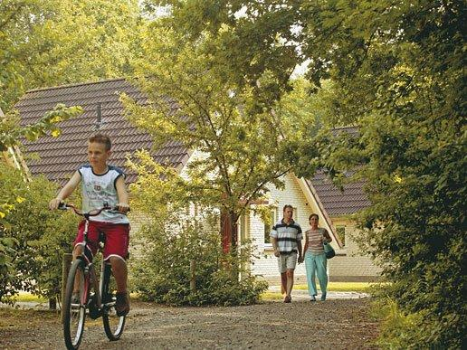 Lekker in het bos fietsen en wandelen