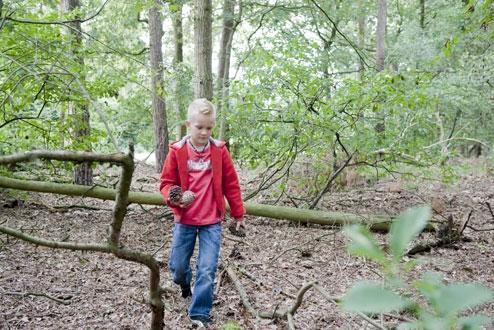 Foto 7, Bospark De Bikkels