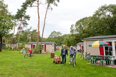 Foto 9, Bospark De Bikkels
