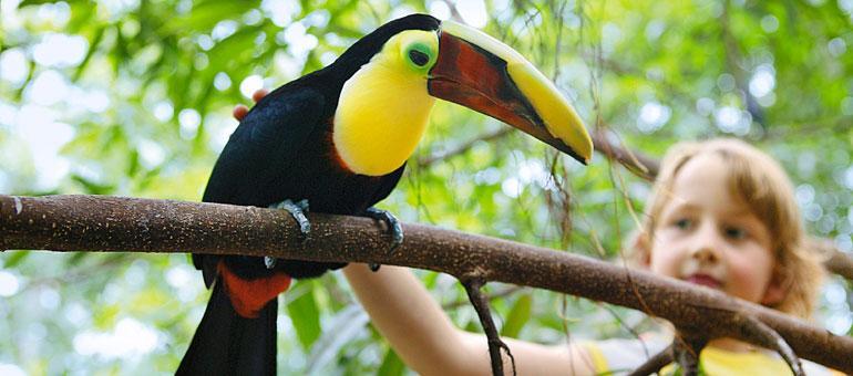 Foto 10, Het Heijderbos
