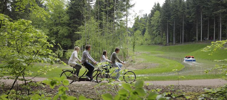 Foto 2, Les Trois Forêts