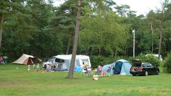 Campeerveld